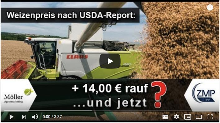 Weizenernte 2019 - Weizenpreis steigt über 14,- €/to! Weizen ernten 2020 in Niedersachsen